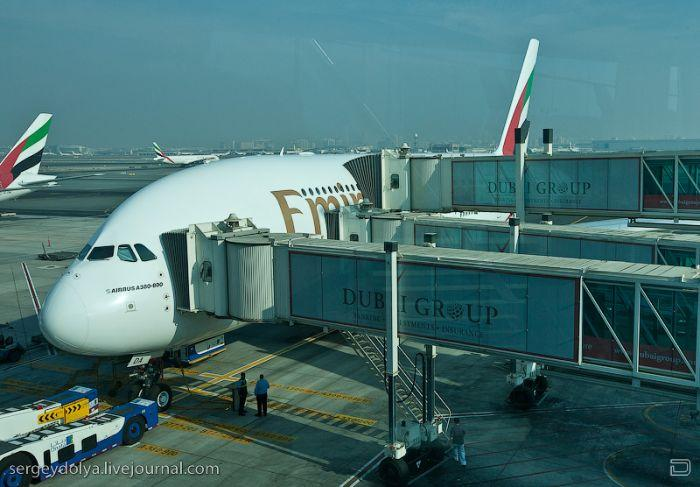 带你登上世界最大飞机a380看看