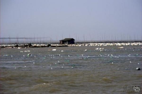 Плавающая деревня в Китае (11 фото)
