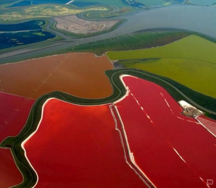 Разноцветные солевые пруды (13 фото)