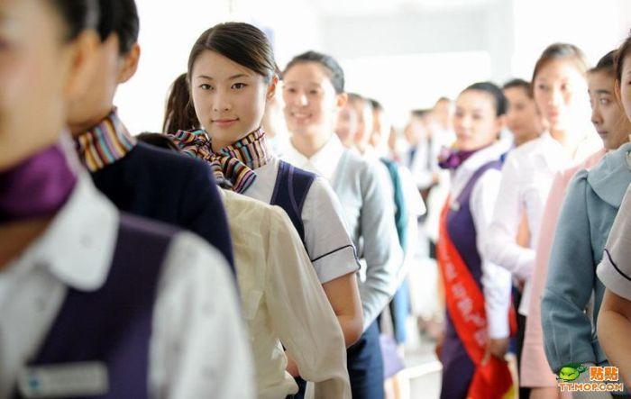 Как в Китае проводят кастинг новых стюардесс и стюардов (12 фото)