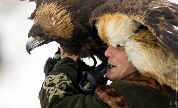 Охота в Казахстане (9 фото)