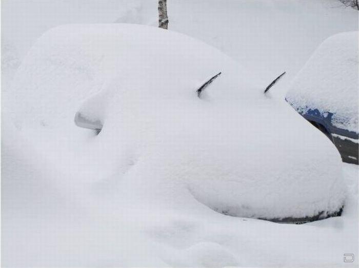 Картинки прикольные про снег с добрым утром