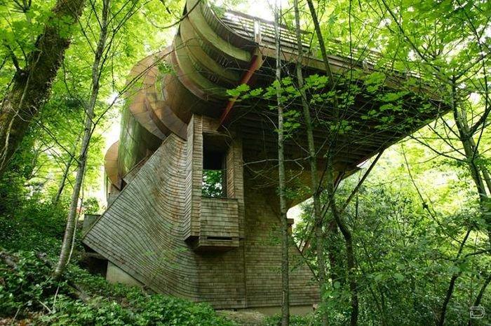 Удивительный деревянный дом (15 фото)