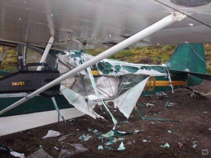 Как починить самолет, если его изодрал медведь