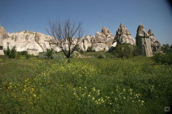 Уникальное создание природы - Долина любви (12 фото)