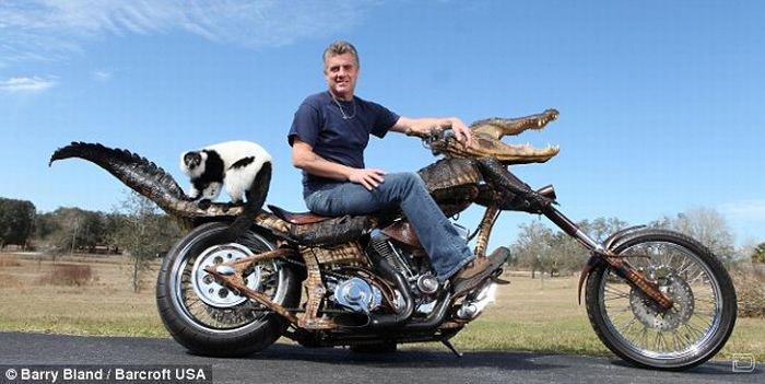 Эксклюзивный мотоцикл из аллигатора (4 фото)