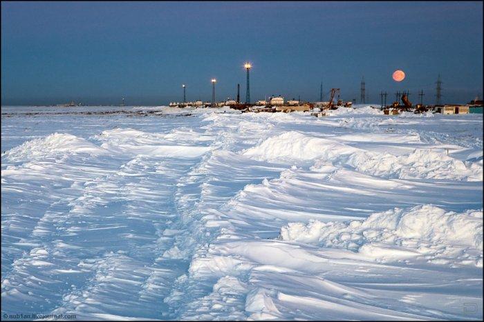 На берегу Северного Ледовитого океана  (13 фото)