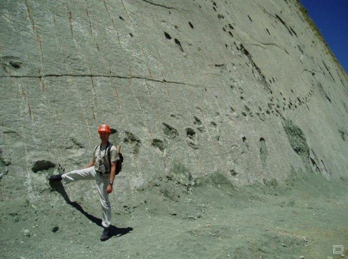 Уникальная стена со следами динозавров (5 фото)