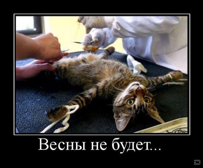 Смешные картинки - Страница 2 1267776885_0001