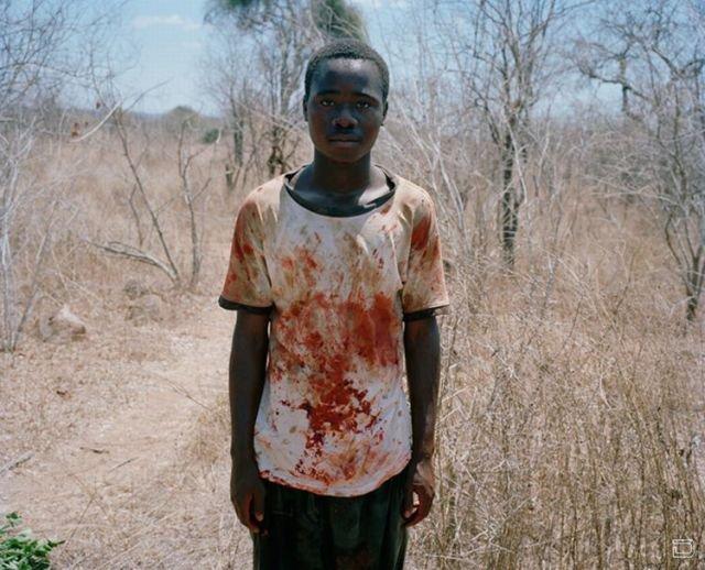 Если слон умирает в Зимбабве (9 фото)