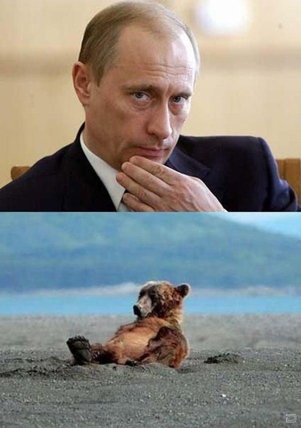 Привет Путин! (20 фото)