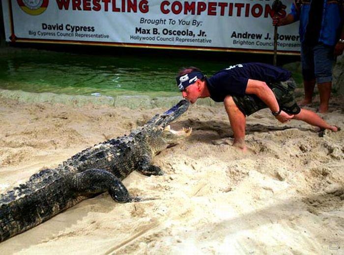 Игры с крокодилом-убийцей (14 фото)