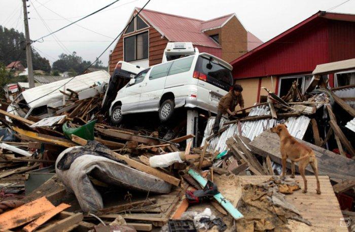 Чили, три дня спустя после одного из сильнейших землетрясений (37 фото)