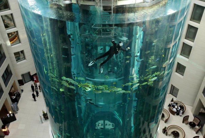 """Аквариум """"AquaDom"""" (11 фото)"""