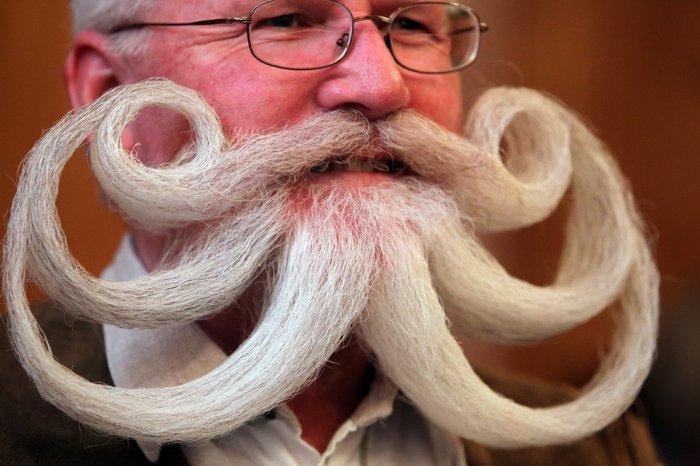 25-й чемпионат бородачей и усачей