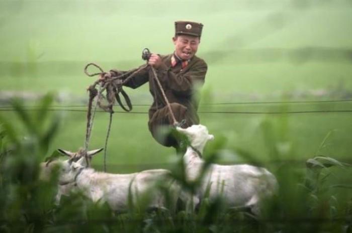 Один день корейского солдата (25 фото)