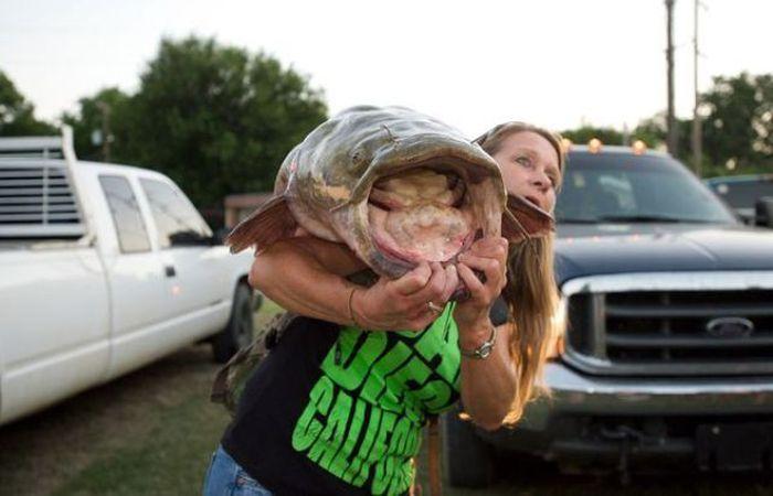 Необычный турнир: Рыбалка на сома с голыми руками (30 фото)
