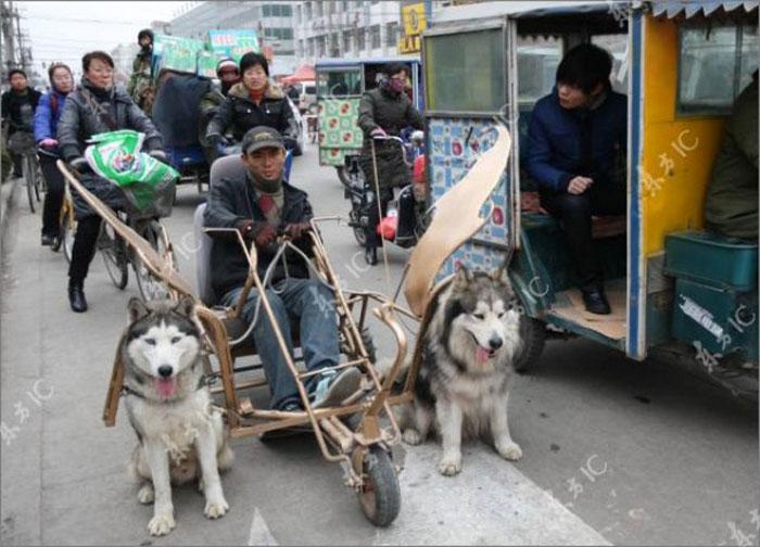 Очередное изобретение китайцев