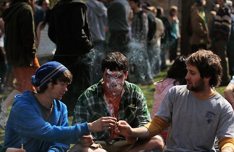Фильм про продажу марихуаны конопля уход в
