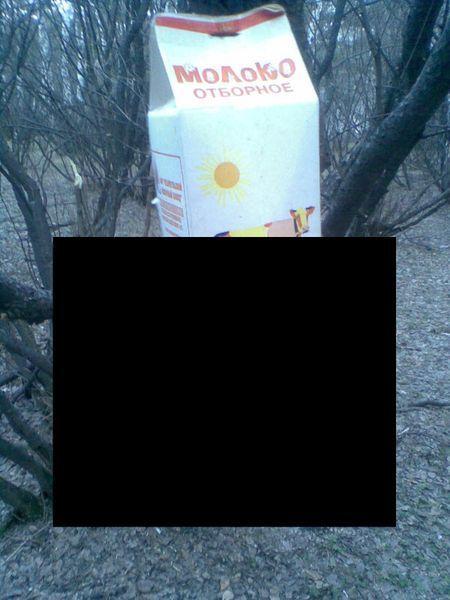 Щедрые челябинские кормушки (2 фото)