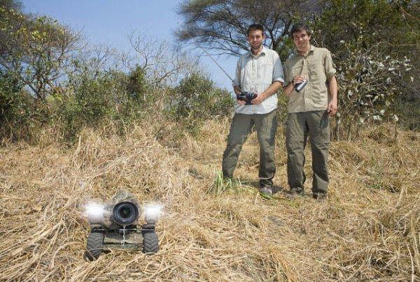 Скрытая камера для животных