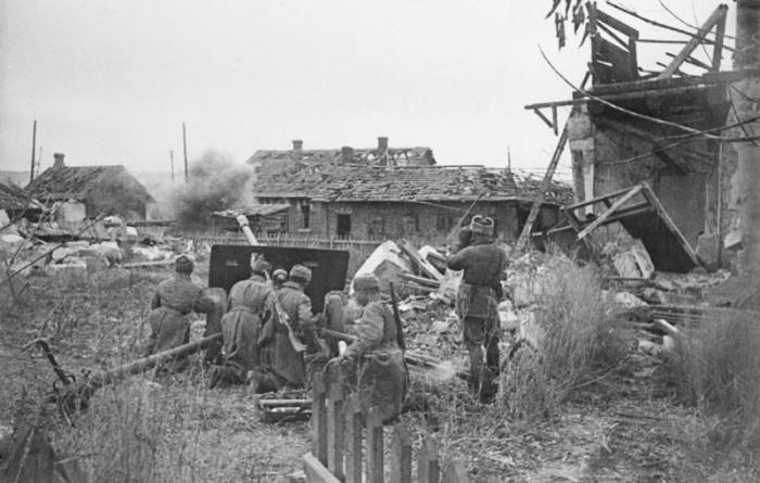 ����������, 1942-43 (25 ����)