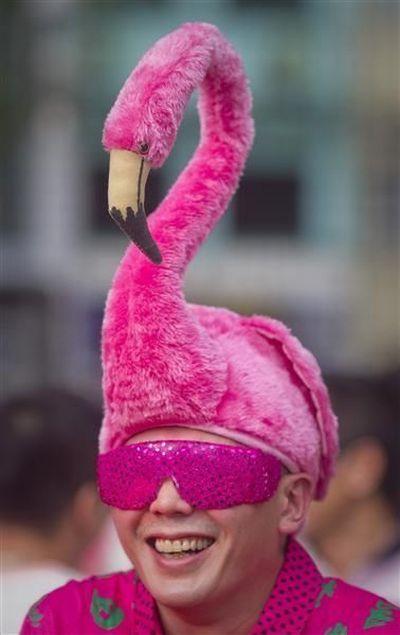фламинго картинки приколы мировой экономики