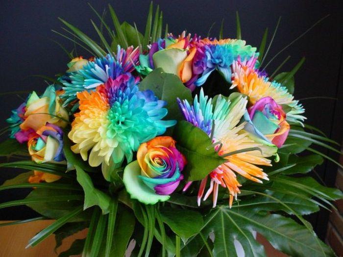 http://doseng.org/uploads/posts/2010-06/1275961939_doseng.org_colorful.jpg