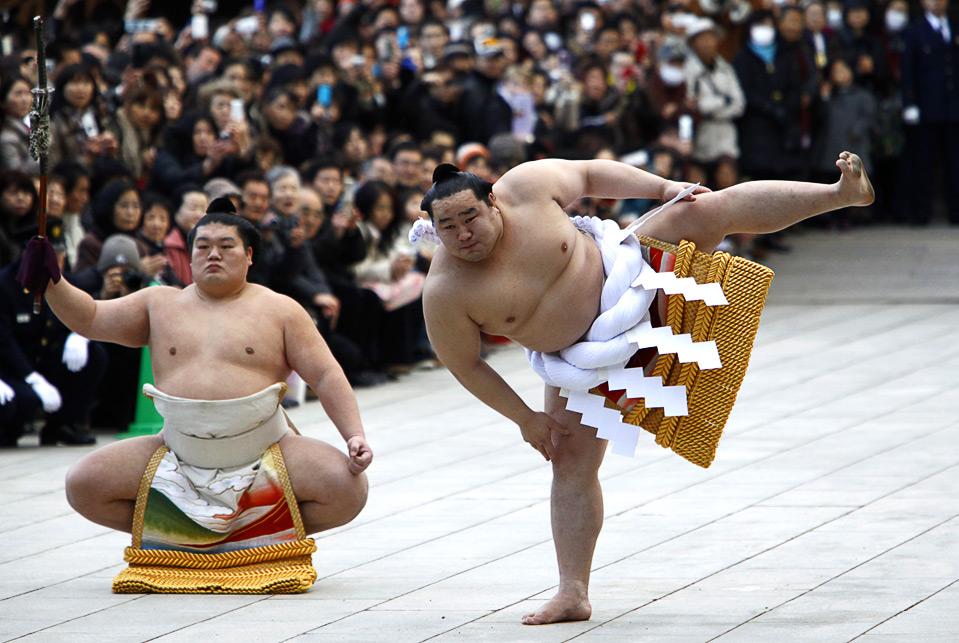 картинки сумо каратэ собой