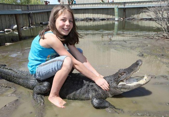 9-летняя девочка работает с крокодилами (7 фото)