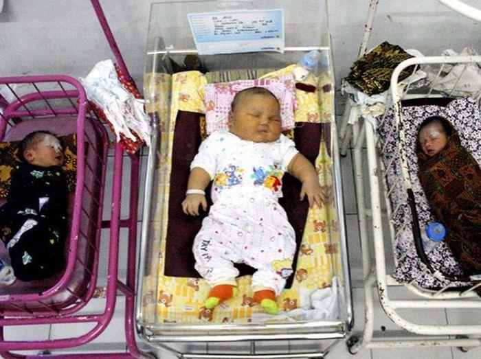 Самый большой новорожденный в мире