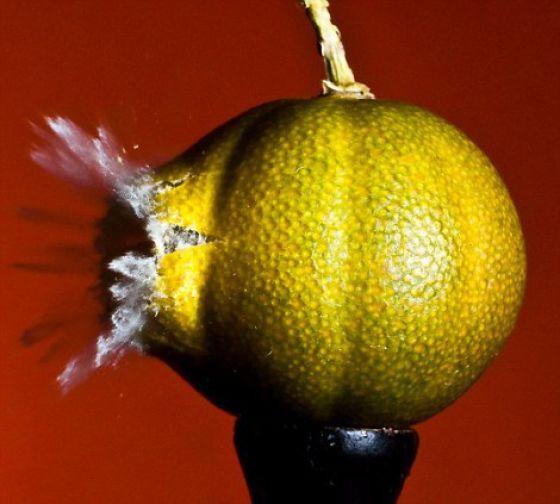 Пуля врезается в предметы (13 фото)