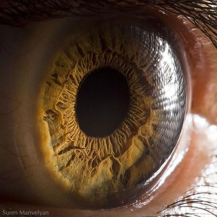 Удивительная макросъемка глаза (8 фото)