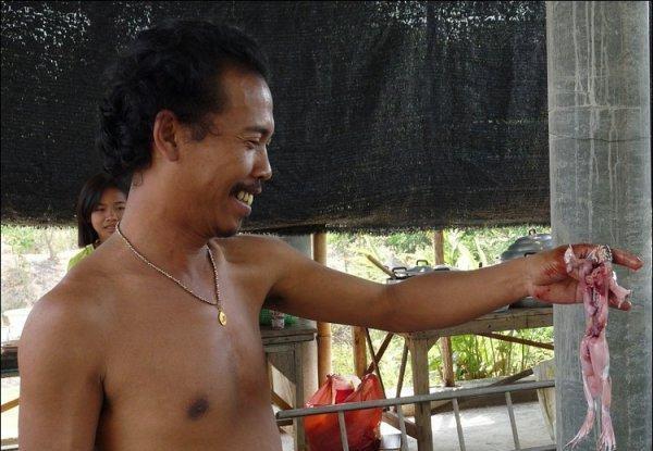 Деликатесы из Азии для гурмана (34 фото)