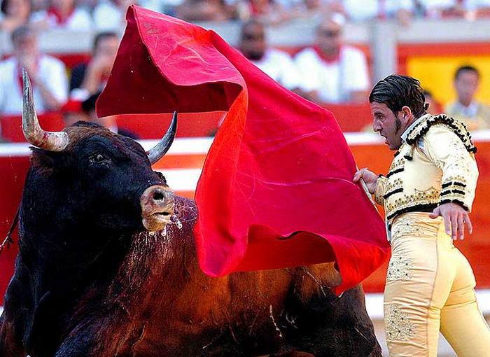 Игры с быками опасны (23 фото)