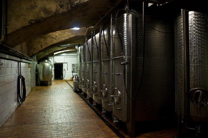 Виноделие в Германии