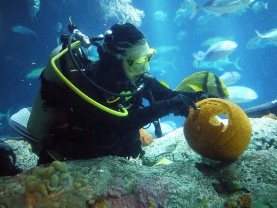 Хеллоуин под водой (9 фото)