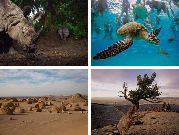 National Geographic, Фотографии, природа (8 фото)