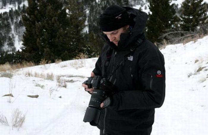 Фотографии дикой природы (39 фото)