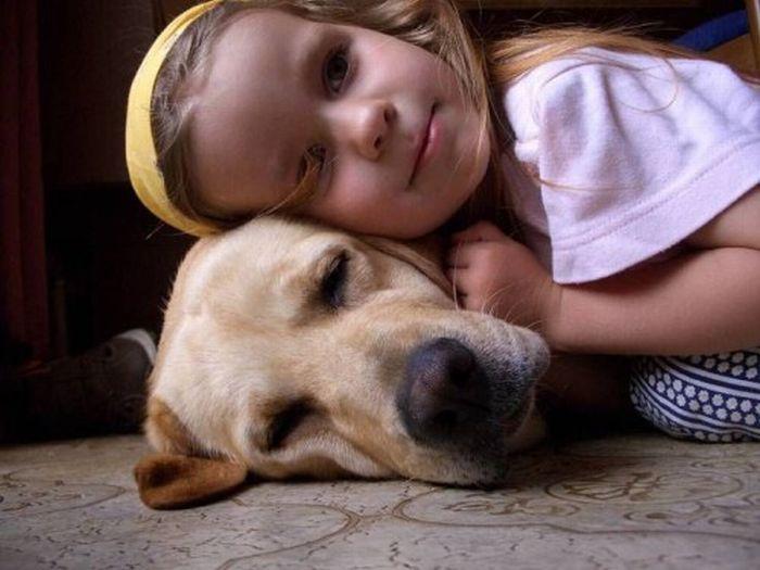 Детишки и их любимцы