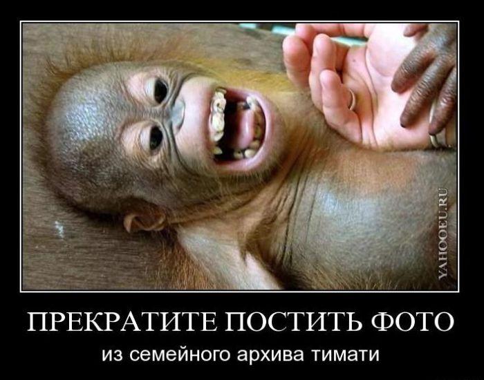 Картинки смешные чеченские
