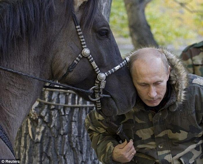 Владимир Путин любит животных (24 фтото)
