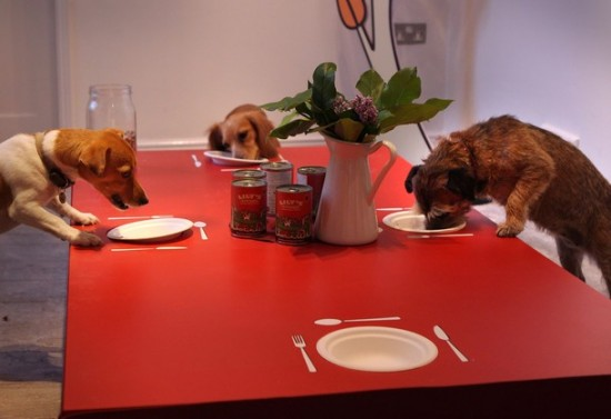 Ресторан для собак в Лондоне (7 фото)