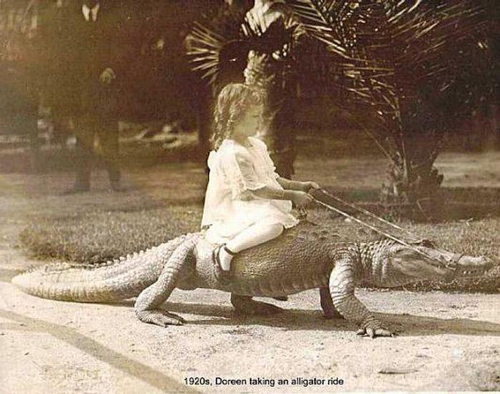 Люди любят кататься на самых разных животных