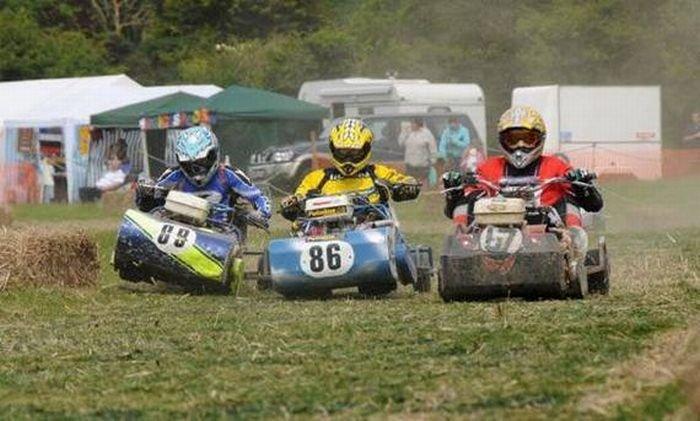 Соревнования гонщиков на газонокосилках