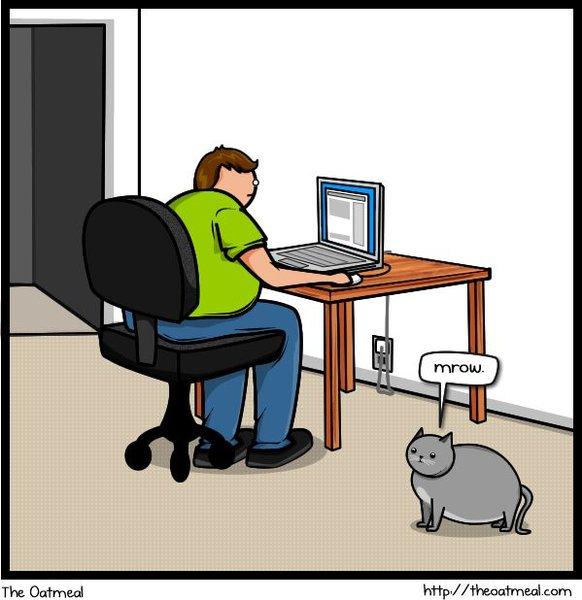 Комикс про кота (20 фото)