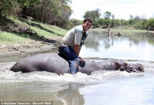 Необычная дружба фермера с бегемотом