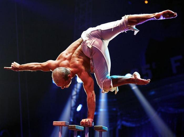 Фестивалей циркового искусства в Монако