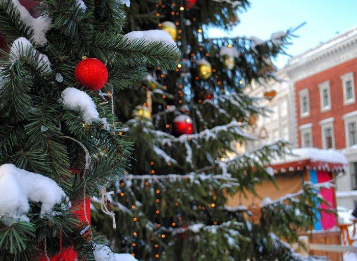 Красивые фотографии зимней Риги