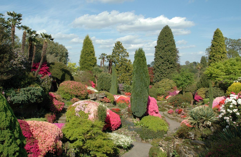 Ботанический сад в англии